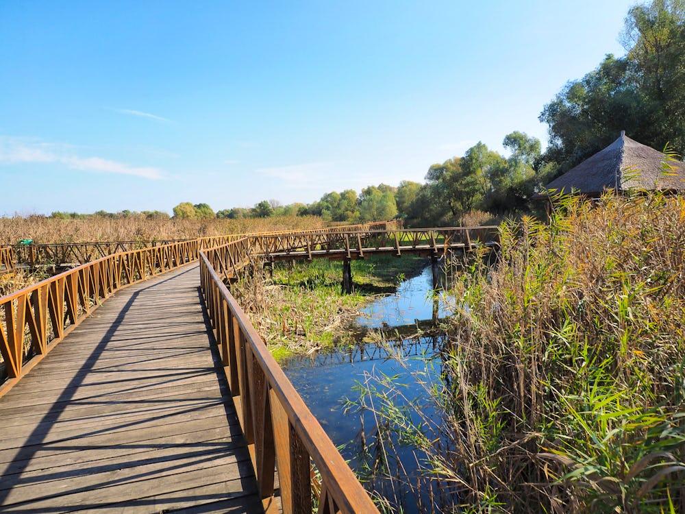 Kopacki Rit Nature Park